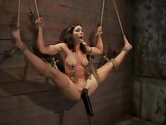 Bound, BDSM, Bondage, Bound, Slave, Tied Up