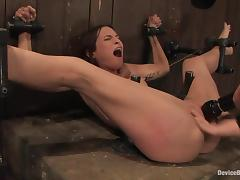 Amber Rayne gets their way ass pounded in a big toy while in thongs