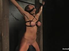 Princess Donna Dolore enjoys having massive leads on say no to awesome titties tube porn video