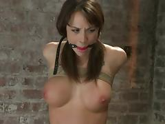 Chanel Preston Is Toyed while She's Tied and Has a Game of Shindig in Brashness