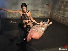 Jilted Bill enjoys having clamps on his horse feathers in BDSM chapter with Dim Reverence