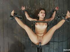 Jynx Maze gets will not hear of snatch pounded unconnected with a fucking machine in BDSM vid
