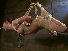 Tied up Gia Dimarco gets distressful and toyed almost both holes