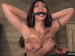 BDSM, BDSM, Bondage, Bound, Doggystyle, Bend Over