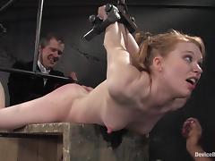 Bondage, Babe, BDSM, Bondage, Bound, Fetish