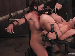 Two horny girls are bound in the device bondage tube porn video