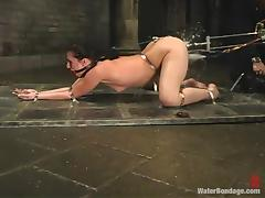 sexy ass brunette needs a clean up