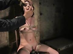 Superb Sasha Grey gets her tits and pussy clothespinned