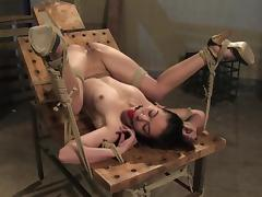 Slim Danielle gets bound and toyed in rough BDSM video