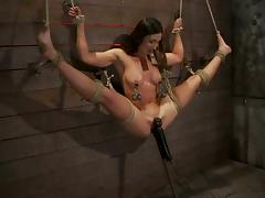 Tied up to a wall brunette gets her pussy toyed