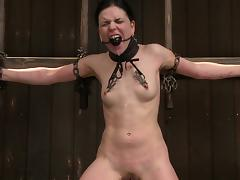 Babe, Babe, BDSM, Brunette, Punishment, Toys