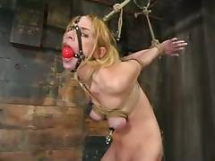 Gorgeous blond is being trapped and inserted