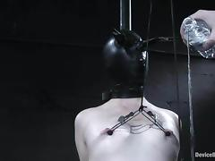 Bondage, BDSM, Bondage, Cunt, Fetish, Nipples