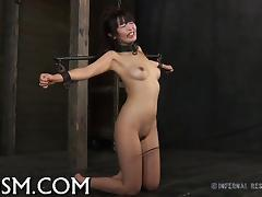 BDSM, Asian, BDSM, Brunette, Fetish, Toys