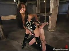 Shy Love is going to enjoy the pain that Deja Daire gives