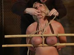 Hog tied Skylar Price gets covered with wax and toyed porn tube video