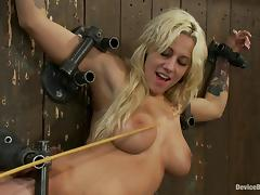 Lylith Lavey gets chained to a wall and fucked by a sex machine porn tube video