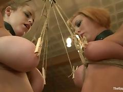 Tied up blonde gets her ass and pussy toyed by another girl