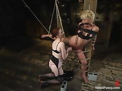 Tied up Missy Monroe gets toyed in both holes by Claire Adams