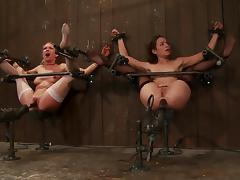Bondage, BDSM, Blonde, Bondage, Brunette, Fetish