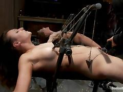 Two curvaceous chicks get toyed by their master