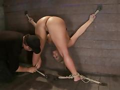 Curvy sex slave Phoenix Marie is being painsulted