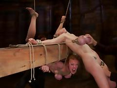 Two bitches get their tits bondaged and tied on the bar porn tube video