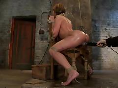 Gorgeous Amy Brooke blows a dick and gets toyed in BDSM vid tube porn video