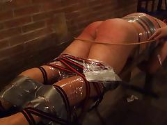 caning porn tube video