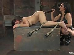 Isis Love toys Leilani Li's cunt after torturing the bitch
