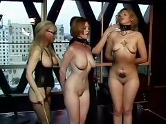 Teacher, BDSM, Femdom, Insertion, Teacher