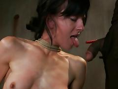 Bound, Anal, Assfucking, BDSM, Bound, Tied Up