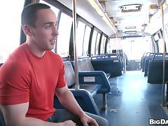 Bus, Bus, Gay, Public