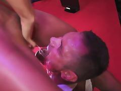 Nacho Vidal penetrates alluring Franceska Jaimes