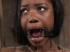 chanell bonded in the basement tube porn video