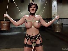 Bound, BDSM, Blowjob, Bound, Brunette, Mature