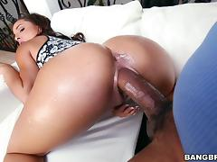 Big Cock, Big Cock, Black, Couple, Doggystyle, Ebony