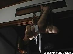 Lovely Japanese cutie gets bound, suspended a tube porn video